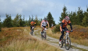 Mountainbike verhuur Amerongen02