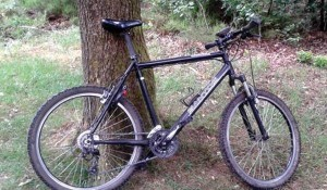 Mountainbike verhuur Amerongen01